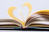 Heart Shaped Book. poster