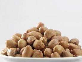 foto of ground nut  - close up of the ground nut - JPG