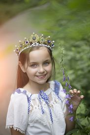 foto of toddlers tiaras  - Portrait of beautiful smiling princess girl with long brunette hair in traditional ukrainian embroidery white blue colors and beautiful diadem with diamonds in gold outdoor vertical picture - JPG