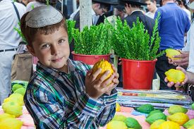 picture of sukkot  - The Jewish holiday of Sukkot - JPG
