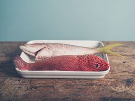 image of red snapper  - Two colorful exotic fish placed in a tray a red butterfish and a Carribean snapper - JPG
