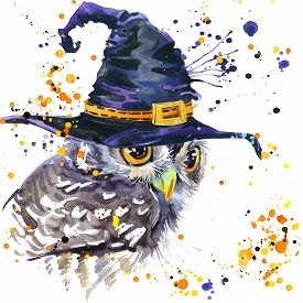 stock photo of owls  - Halloween owl and witch hat - JPG
