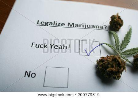 Legalize Marijuana Ballot