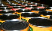 stock photo of factory-worker  - Food cans in a row for donation to charity  - JPG