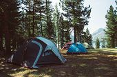 White Touristic Tent In A Forest poster