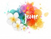 Abstract Background With Watercolor Colorful Splashes And Frangipani (plumeria) Flowers. Hello June  poster