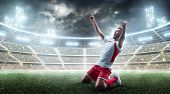 Soccer Wins. Professional Soccer Player Celebrates Winning The Open Stadium. Sport. 3d Stadium poster