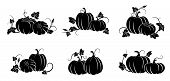 Pumpkin. Set Of Silhouettes Of Different Pumpkins.  Isolated Silhouette Vegetable,  Leaves, Flower A poster