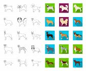 Dog Breeds Outline, Flat Icons In Set Collection For Design.dog Pet Vector Symbol Stock Web Illustra poster