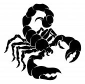 stock photo of scorpion  - An illustration of a stylised black scorpion perhaps a scorpion tattoo - JPG