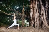 stock photo of virabhadrasana  - Woman in white costume doing Yoga warrior pose near big banyan tree in Goa India - JPG