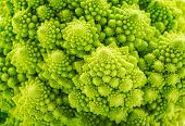 foto of romanesco  - Beautiful closeup background of Romanesco spiral broccoli - JPG