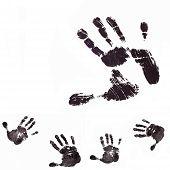 pic of dna fingerprinting  - Collage detail print of the black hand on white background - JPG