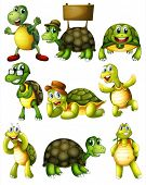 stock photo of green turtle  - Ilustration of a set of turtle with actions - JPG