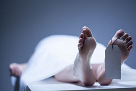 stock photo of morbid  - Labeled remains of person lying in mortuary - JPG