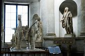 foto of great horse  - ROME ITALY  - JPG