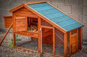 image of hen house  - Orange and green Hen house with many eggs. ** Note: Visible grain at 100%, best at smaller sizes - JPG
