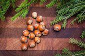 image of hazelnut tree  - Wood background with hazelnuts and christmas  fir tree - JPG