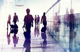 pic of cabin crew  - Travel Airport Business Cabin Crew Business Travel Concept - JPG