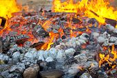 picture of baked potato  - Baked potatoes covered with aluminum foil roasting in a Lag Baomer bonfire with orange flames and firewood in a secular suburb of Tel Aviv Israel - JPG