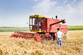 picture of combine  - Business people standing beside combine harvester in ripe wheat field - JPG