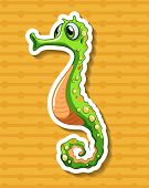 foto of seahorse  - Close up seahorse with orange background - JPG