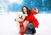 pic of christmas dog  - Winter christmas technology and people concept  - JPG