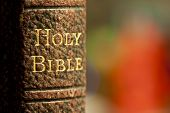 image of leather-bound  - Closeup shot of the holy bible in gold letters on a leather bound book - JPG