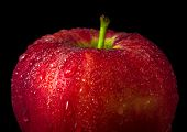 Water Droplet On Glossy Surface Of Red Apple On Black Background poster