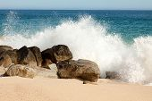 picture of cortez  - Sea of Cortez Splashing Along Mexican Beach - JPG