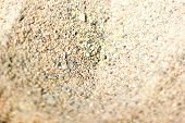 Sand Texture. Brown Sand. Background From Fine Sand. Sand Background. poster