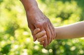 Childs Hand And Old Hand Grandmother. Concept Idea Of Love Family Protecting Children And Elderly Pe poster