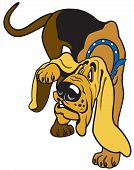 stock photo of bloodhound  - cartoon dog  bloodhound breed - JPG