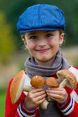 stock photo of edible mushroom  - Mushrooms picking - JPG