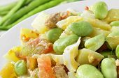 picture of boil  - closeup of a salad with raw broad beans - JPG