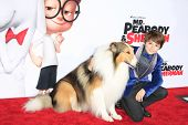 LOS ANGELES - MAR 5: Max Charles, Lassie at the premiere of 'Mr. Peabody & Sherman' at Regency Villa