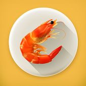 Shrimp, long shadow vector icon