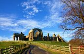 View of Egglestone Abbey, County Durham