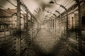 stock photo of ww2  - Electric fence in former Nazi concentration camp Auschwitz I - JPG