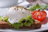 stock photo of benediction  - sandwich with egg Benedict and tomato on a plate closeup - JPG