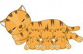 stock photo of breastfeeding  - Illustration Featuring a Cat Breastfeeding Her Kittens - JPG