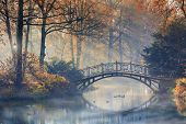 Autumn - Old bridge in autumn misty park poster
