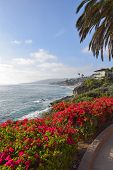 picture of southern  - A view of Laguna Beach on a summer afternoon - JPG