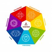 image of kundalini  - Vector illustration of Color chakra scheme on white background - JPG
