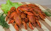 picture of boil  - Boiled crayfish in the bowl with dill - JPG
