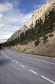 pic of tree lined street  - View along a deserted mountain road lined with evergreen pine trees under majestic rocky cliffs - JPG