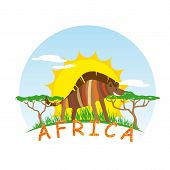 image of hyenas  - Sunny Hyena on Background of the African Sun - JPG