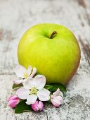 picture of apple blossom  - apple and apple tree blossoms on a old wooden table - JPG