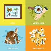 foto of creatures  - Insects design concept set with dangerous harmful and beneficial creatures flat icons isolated vector illustration - JPG