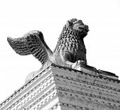picture of piazza  - winged lion statue in piazza san marco in Venice Italy - JPG